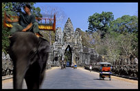 An elephant walks in front of Angkor Thom's South Gate. Siem Riep, Angkor, Cambodia