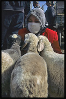 Portrait of Uyghur woman and her sheep at the Sunday Market. Hotan, Xinjiang, China