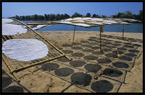 Drying Lao-style pancakes on the four thousand islands. Si Phan Don, Don Khong, Laos
