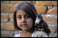 Portrait of a Pashtun girl and her dove. Madyan, Pakistan