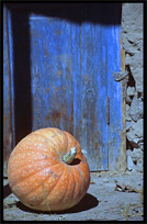 A pumpkin and a typical blue door. Karimabad, Hunza, Pakistan