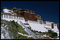 The Potala with the White and the Red Palace. Lhasa, Tibet, China