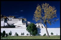 The Potala Palace and pilgrims. Lhasa, Tibet, China