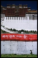 A Tibetan pilgrim walking the Potala Kora. Lhasa, Tibet, China